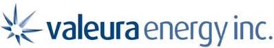 Valeuraenergy-Partner logo