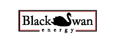 blackswan-logo-partner